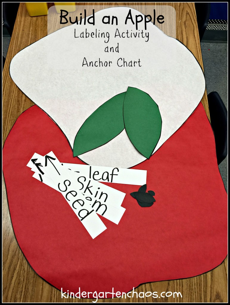 Build an Apple Anchor Chart