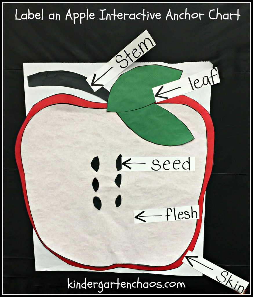 Label an Apple Interactive Anchor Chart