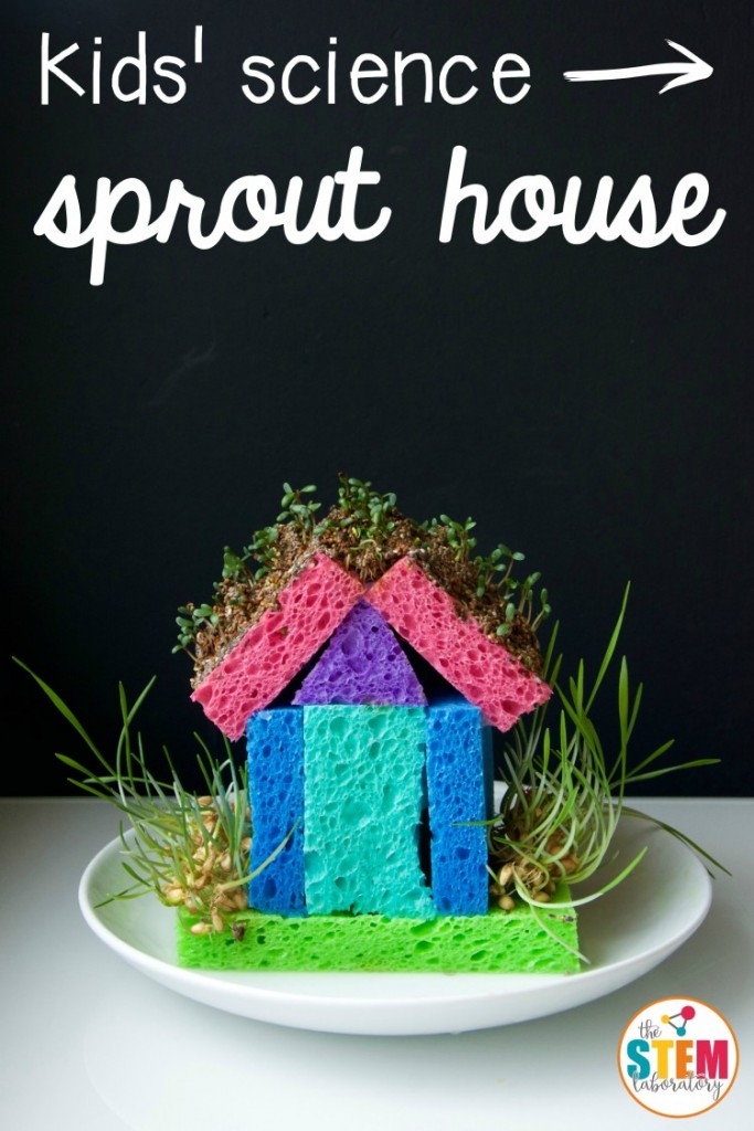 Sprout House STEM activity