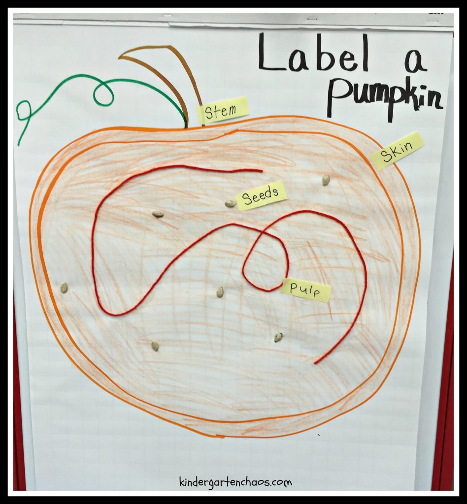 Label a Pumpkin Anchor Chart - kindergartenchaos.com