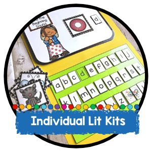 Individual Phonics Literacy Kit
